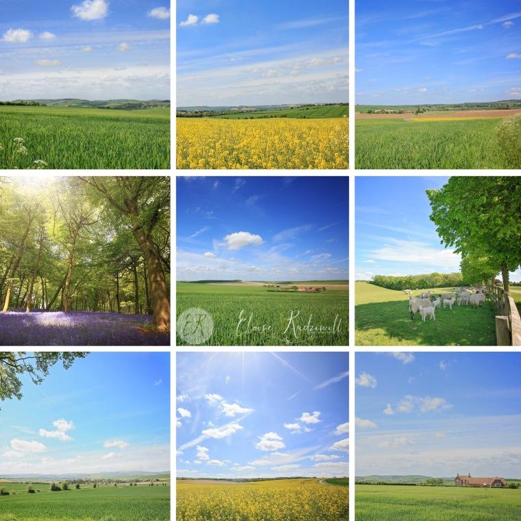LandscapesTip9upTemplage